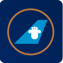 Авиакомпания China Southern