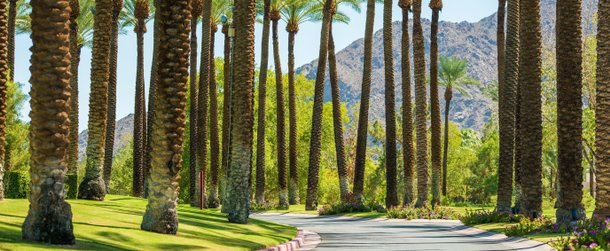 Palm Springs (Estados Unidos)‎